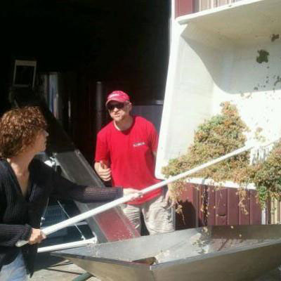 Getting ready to process some white wine grapes